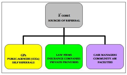 Figure 1 Sources of referals